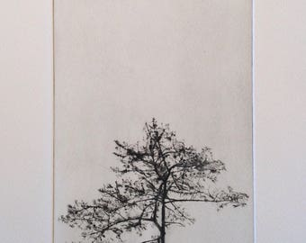 Tree Silhouette, A drypoint etching of a tree