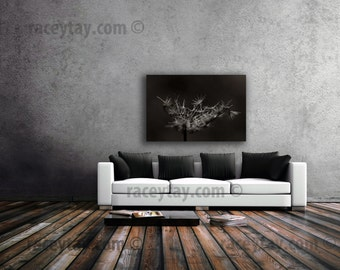 Nature Photography on Canvas Large Wall Art Canvas Print Brown Dead Flowers Rustic Wall Decor