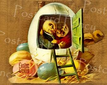 FANTASY Chicks in Egg House, Instant DIGITAL DOWLOAD, Vintage Postcard, Printable Image