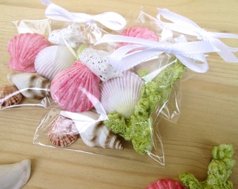 Fondant Seashell Favor- edible seashell wedding favor- seashell favor idea- seashell party favors- beach wedding favors- seashell favor bags