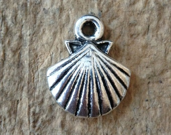 6pc Shell Charms, Clam Shell, Beach Jewelry, Beach Theme, Jewelry DIY, Jewelry Making, DIY, Craft Supplies, Jewelry Supplies