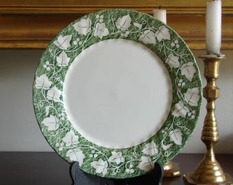 Churchill Dinner Plante  Verdigris  Ivy Pattern Staffordshire : churchill fine english tableware - Pezcame.Com