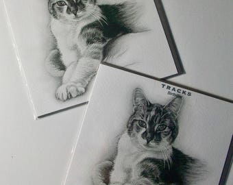"""12 cards Pets ILLUSTRATED Cards Just 35P, """"Tracks"""", 6"""" SQUARE, WRAPPED - We also have birthday cards / christmas cards / thank you cards"""