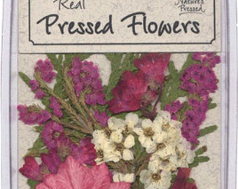 Pressed, Dried Pink and mauve flowers with greenery - 10 pieces  SALE