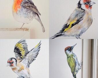 Woodland bird wall stickers, SET OF 4, British bird decor, bird wall decals, bird wallpaper, wildlife wall decals, bird home decor