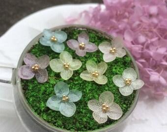 Real Preserved Hydrangae Flower Stud Earing