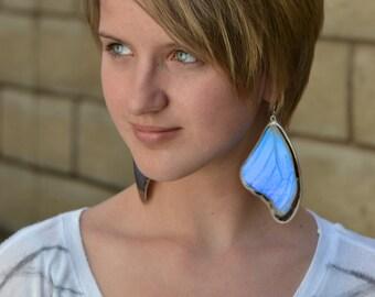 Butterfly earrings, Real Giant Blue Morpho Butterfly (Morpho didius) (top/fore wings) earrings
