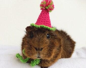 Guinea Pig Hat, Guinea Pig Costume, Guinea Pig, Guinea Pig Birthday Hat,  Hedgehog Clothes, Rat Hat, Rat Clothes, Guinea Pig Hat, Guinea Pig