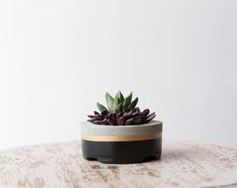 Mother's Day Gift for Her, Small Concrete Planter, Black & Gold