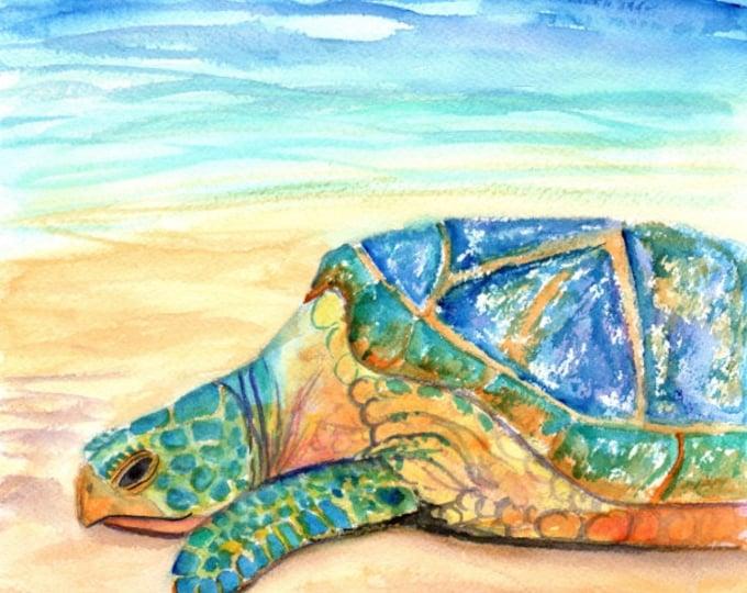 turtle watercolors, sea turtle paintings, kauai fine art, original watercolors,  hawaiian honu,  hawaii kauai, ocean life, ocean animals