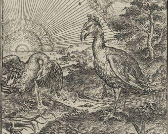 Poster, Many Sizes Available; Gheeraerts Het Theatre F13 Phoenix 1568