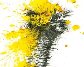 Animal Picture Artwork
