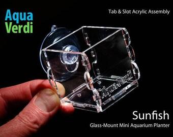 Sunfish Aquarium Planter 2-pack