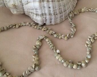 Vintage Seashell jewelry, Seashell jewelry, Hawaiian / Philippines made, Home and living, Beach Jewelry, Cruise Jewelry.tropical jewelry.