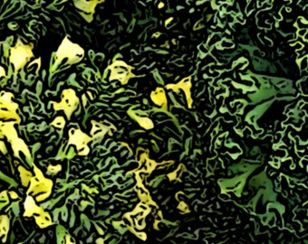 Abstract Yellow Flowers with Greens