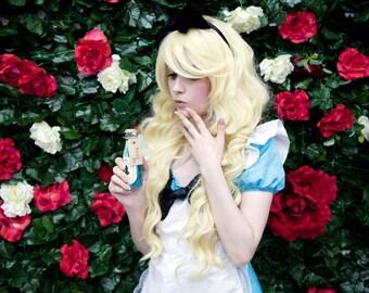 Alice in Wonderland Cosplay Print 3