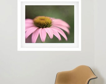 Framed flower photography, framed floral print, framed flower artwork, matted framed wall art picture, large wall decor framed art oversized