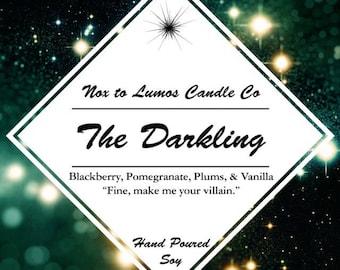 The Darking- The Grisha Trilogy