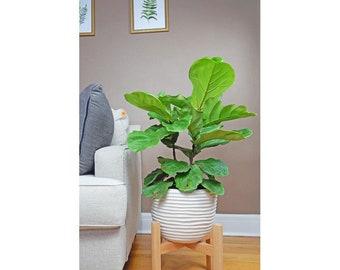 Large Plant Stand/Mid Century Modern Planter/Modern Wooden Plant Stand/tall Pot stand/Indoor Plant Stand/Wood Plant Stand/flower pot holder