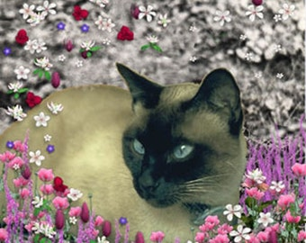 Stella in Flowers I - Siamese ACEO, Art Card