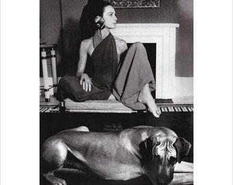 Vintage Vogue Dog Poster Print, Canine Couture, 1960s Great Dane Fashion Art, Dog Art, 11 x 14  Mat