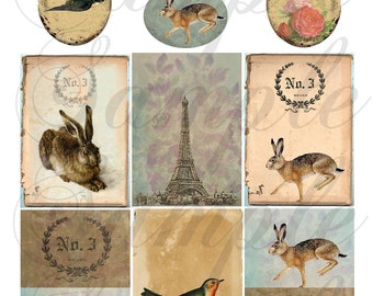 TiffanyJane Instant Download Rabbit-Bird-Egg-Collage Sheet For Art--Embellishment--Paper Tags--Scrapbooking-Altered Art