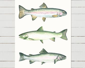 Two Rainbows & A Dolly, fish print, fish wall art, rainbow trout, fish illustration, lake watercolour, rustic,