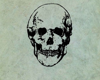 Skull LARGE - Antique Style Clear Stamp