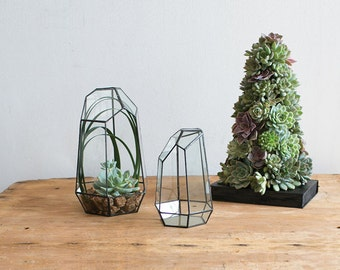 Geometric Glass Terrarium, Modern Planter, Air plant container, Air Plant Terrarium, Succulent Planter, Rock Hexagonal Planter, #Giftsforher