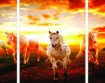 PINTO HORSES at SUNDOWN