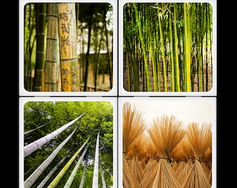 Bamboo Forest - Ceramic Coaster Set