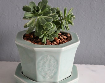 Porcelain planter, Jade planter pot perfect for Mother's Day or any occasion
