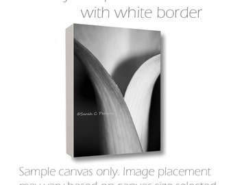 8x8-10x10-12x12-14x14-16x16-20x20-Canvas Wall Art-Black & White-Lily Photography-Fine Art Canvas-Floral Photo-Square Canvas-Feminine Art