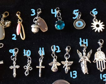 61 different clip on Charms!