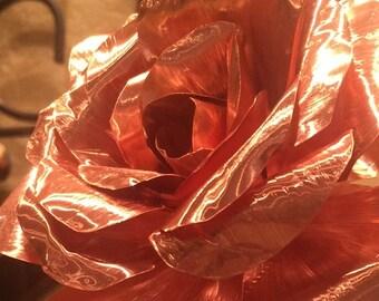 7th Anniversary Copper Rose