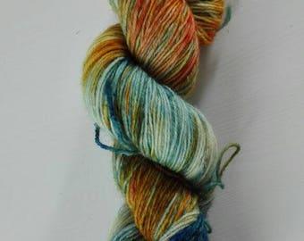 100 g sock yarn hand dyed autumn sun day