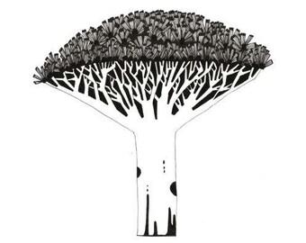 DRAGON TREE, nature illustration