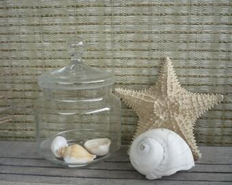 Vintage Apothecary Jar, Glass Display Jar, Cottage Decor, Shabby Chic