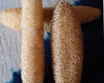 Natural Loofah  - Loofas - Package of 6 - Bath Decor