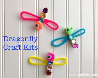 Dragonfly Craft Kit