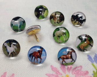 Decorative Push Pins, Drawing Pins, Horse Push Pins, Thumbtacks, Cork Board Pins, Horse Drawing Pins, Teachers Gift