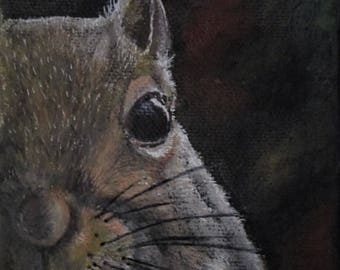 Soul of a Squirrel, animal,art, wildlife, squirrel,painting,print,face,backyard,small animal,unique,oil,combination,wall art