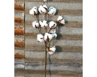 """Country Cotton Ball Spray, 20"""", Farmhouse Decor, Country Primitive Decor, Floral Arranging"""