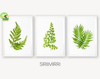 Tropical Leaves, Leaf Print, Fern Print, Tropical Print, Leaf Wall Art, Fern Print Set, Palm Art Print, Botanical Leaf Art, Botanical