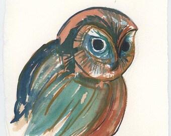 Original Owl Watercolor Illustration, Sawhet Owl