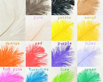 "Ostrich Feather Plumes- 12-14"" (10pcs)"
