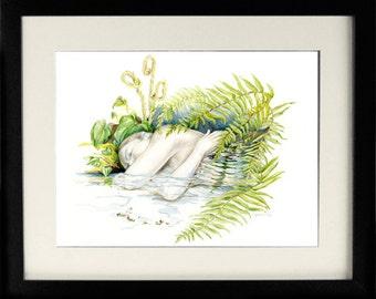 gifts, decor, Woodland Nap, print, forest, figurative, fantasy, stream, ferns