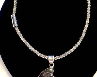 Silver necklace with natural fossilized Nautilus Seashell Artifact