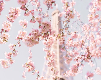 Paris Photography - Accolade Cherry Blossoms at the Eiffel Tower, Spring in Paris, Paris Art Print, Travel Photograph, Large Wall Art