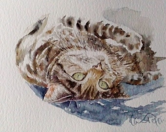 Original painting with the watercolor of Gatta. Original Painting Watercolour Cat